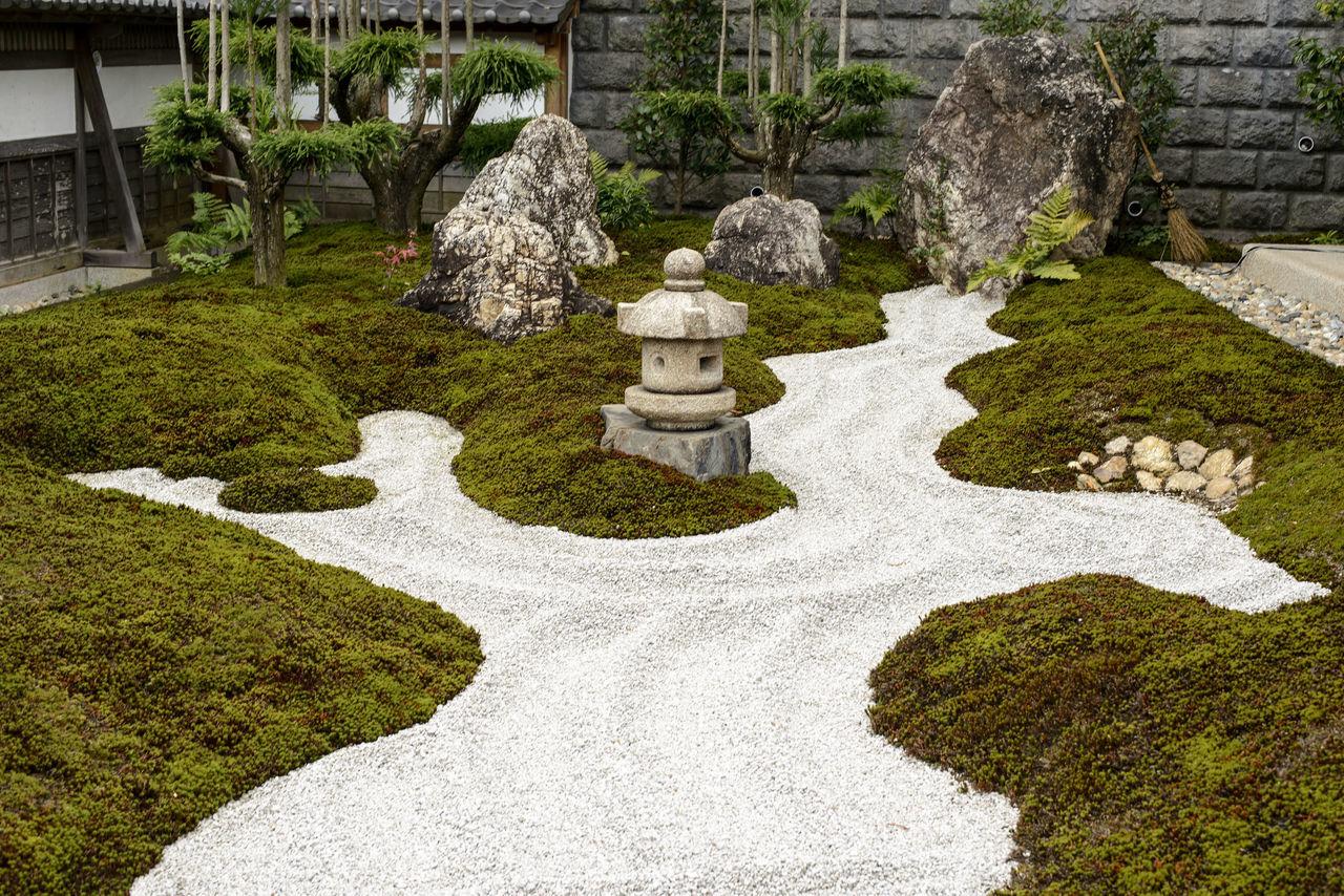 Day Nature No People Outdoors Pebbles Sand Tree Zen Garden