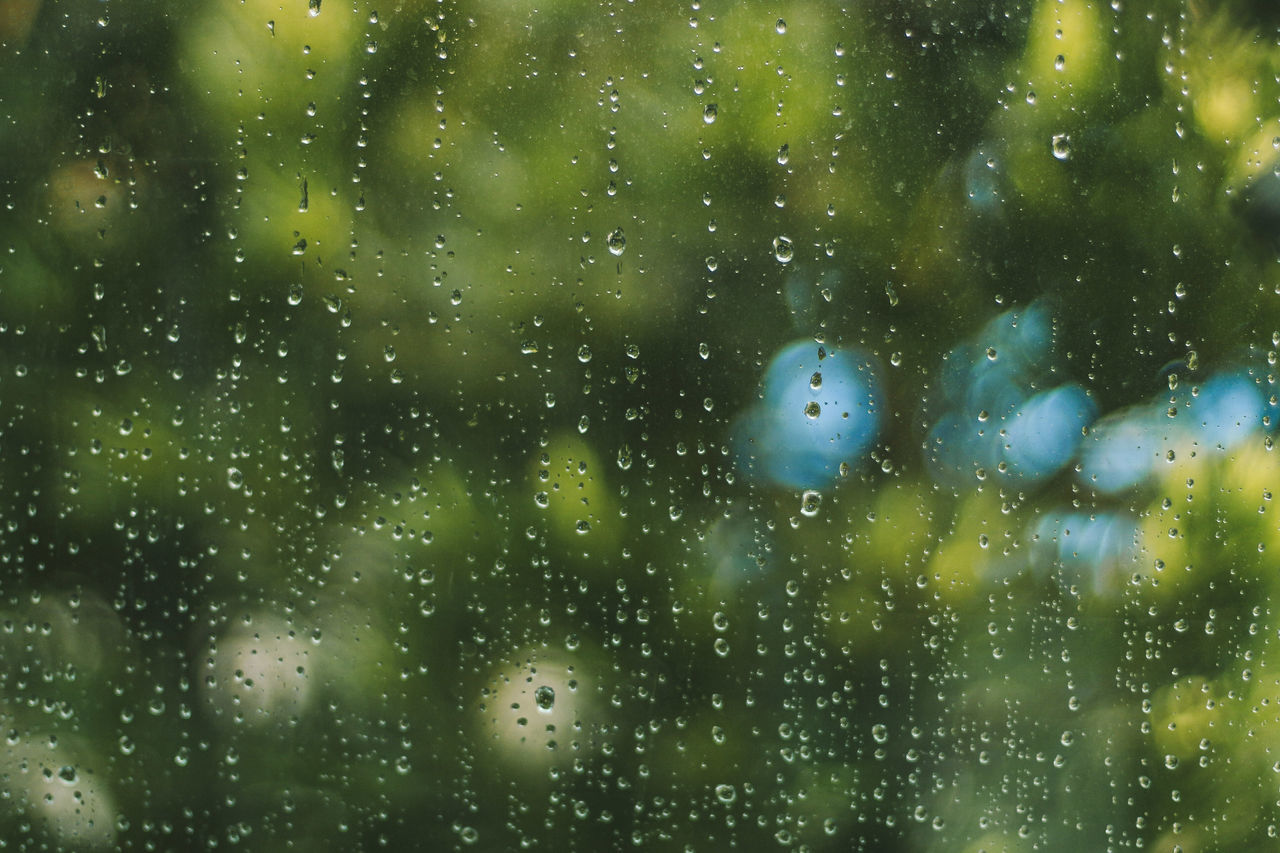 Rainy days Backgrounds Close-up Day Drop Freshness Full Frame Nature No People Outdoors RainDrop Water Wet