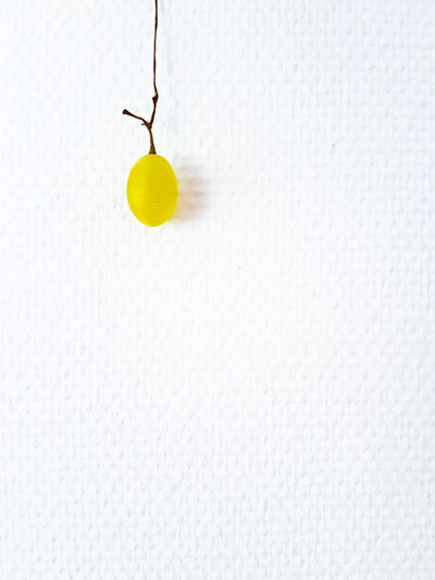 a grape ..do it like the potatoe! Grape Fruit Fruitphotography Fruitporn Frucht Hanging Studio Shot Indoors  White Background No People Food Healthy Healthy Eating Vitamin Wooden Minimalism Früchtchen Weintraube One Object Close-up Open Edit Eye4photography  The Week On EyeEm Samsungphotography Samsung
