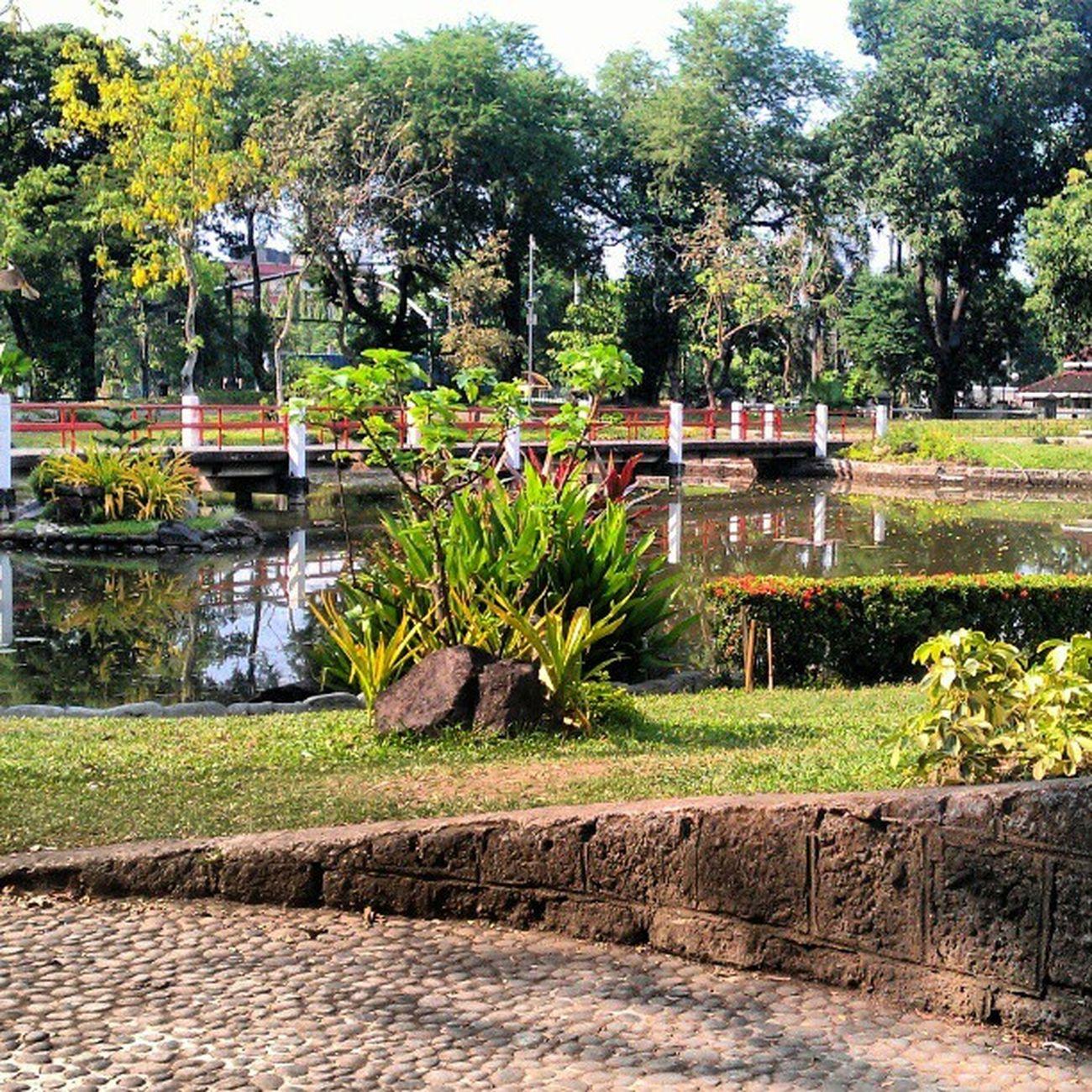 Japanese  Garden Luneta Park Manila Philippines zen views trees pinay