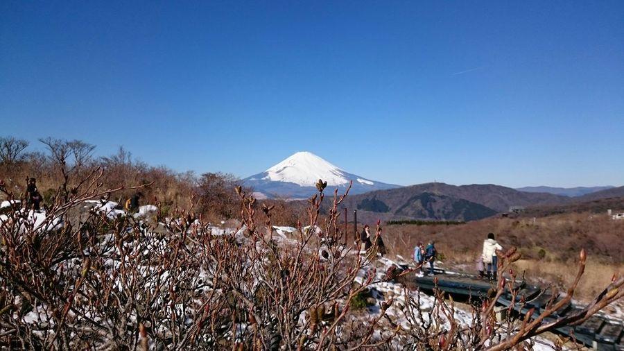 Hakone Mt.Fuji Beautiful Landscape