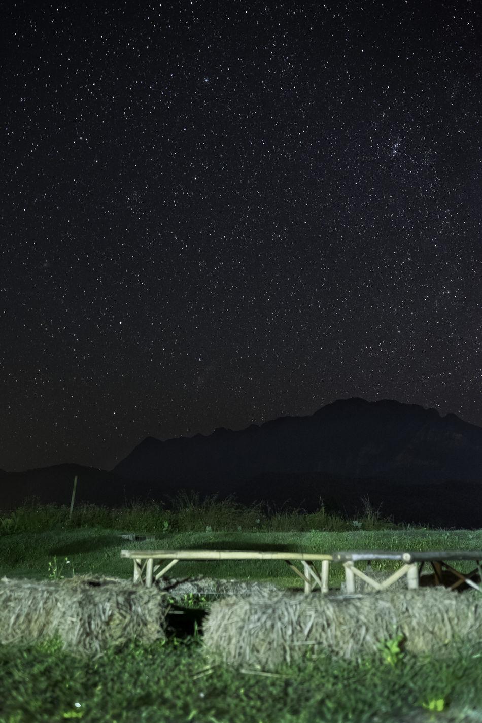 สวนบัวชมพู เชียงดาว Agriculture Chiang Dao Chiang Mai Night Night Photography Outdoors Stars Tranquil Scene
