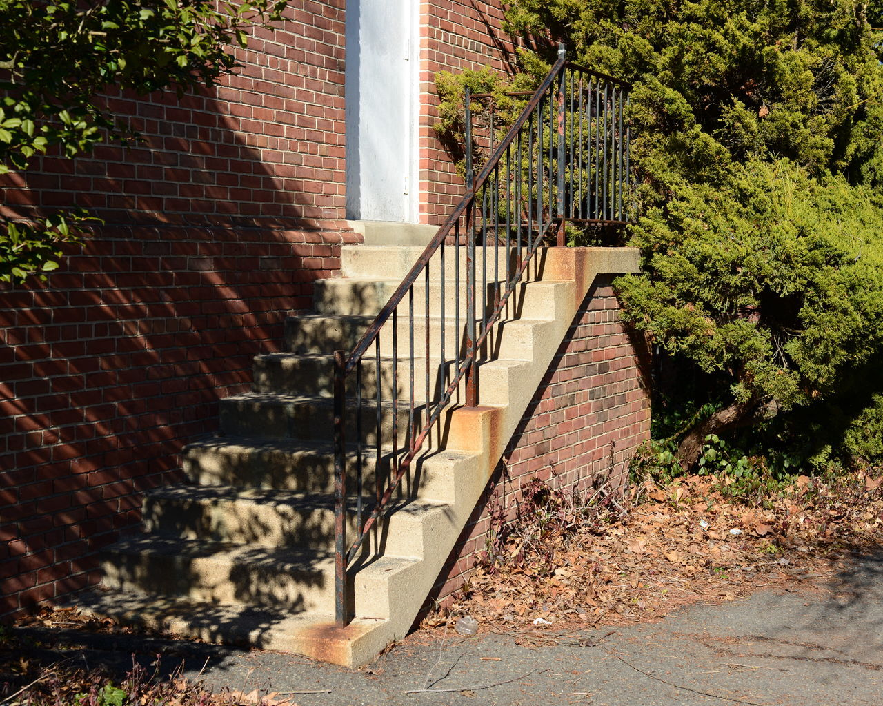 architecture, steps, staircase, built structure, steps and staircases, railing, building exterior, stairs, no people, day, outdoors, tree