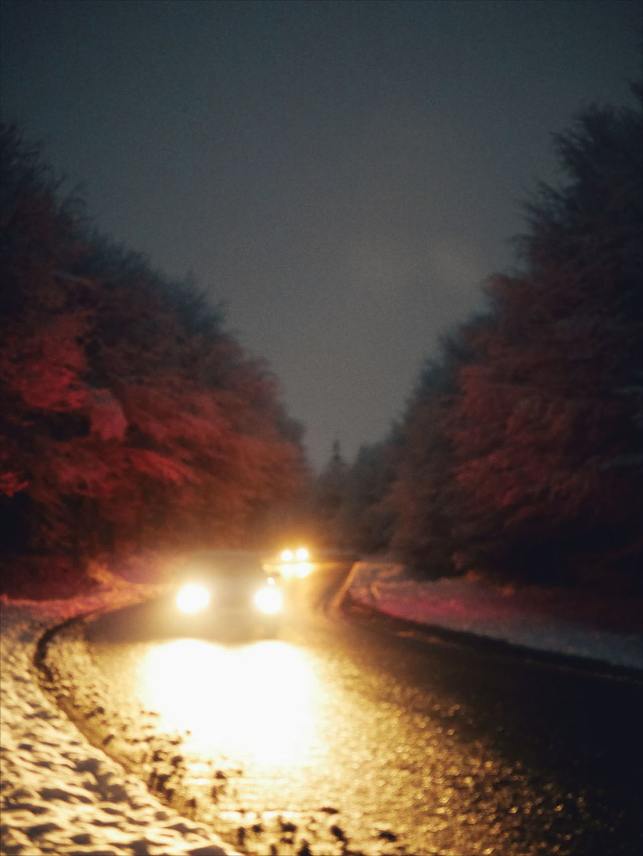 night snow Road car Cars illuminated Winter cold temperature snow Tree no people