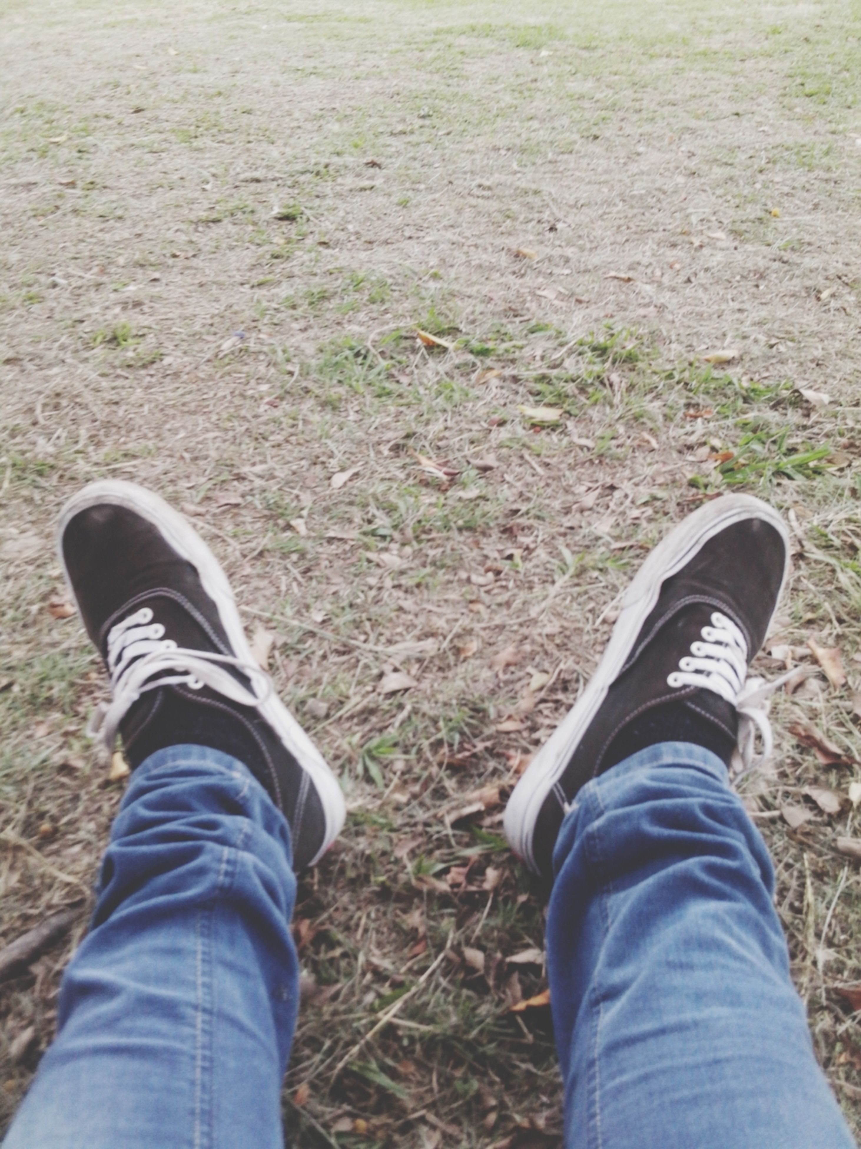 low section, person, shoe, personal perspective, lifestyles, jeans, field, standing, grass, leisure activity, men, casual clothing, human foot, footwear, unrecognizable person, grassy, high angle view