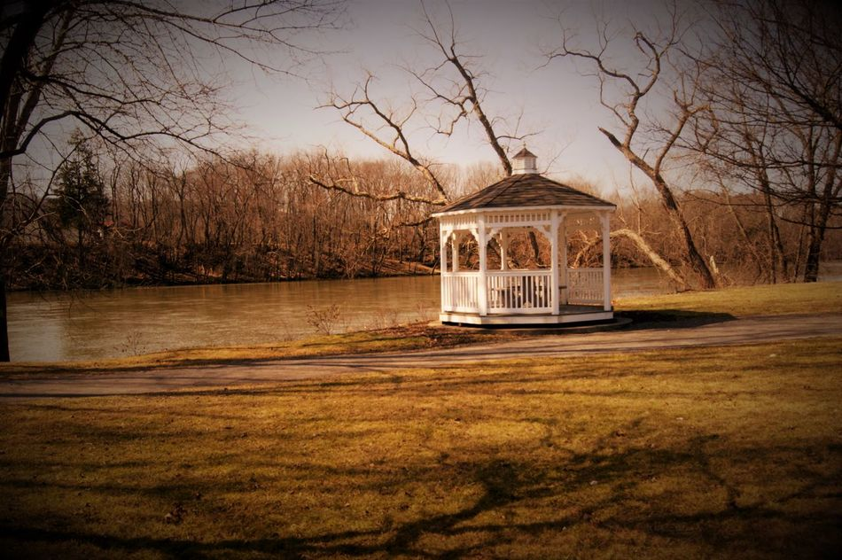 Bare Tree Betts Park Day Gazebo No People Outdoors Sky Water