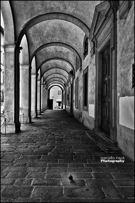 eye4photography  in Florence by Marcello