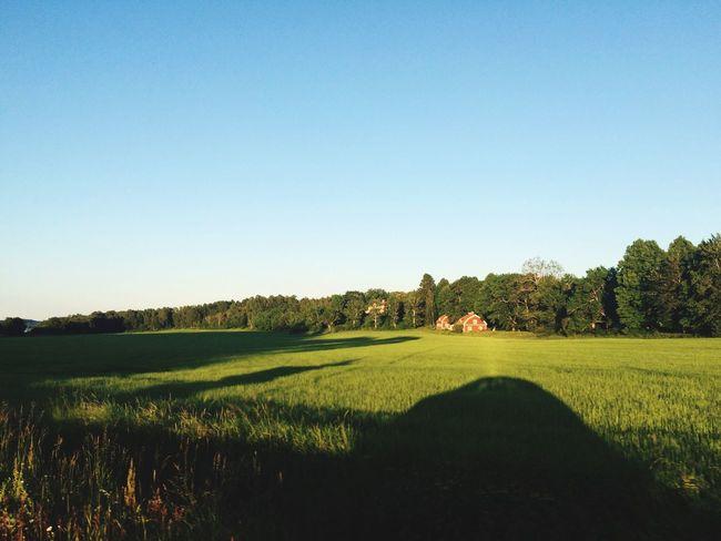 Swedish Summer Swedish Village Sunshine Hanging Out Traveling from Stockholm to Motala Visiting Friends