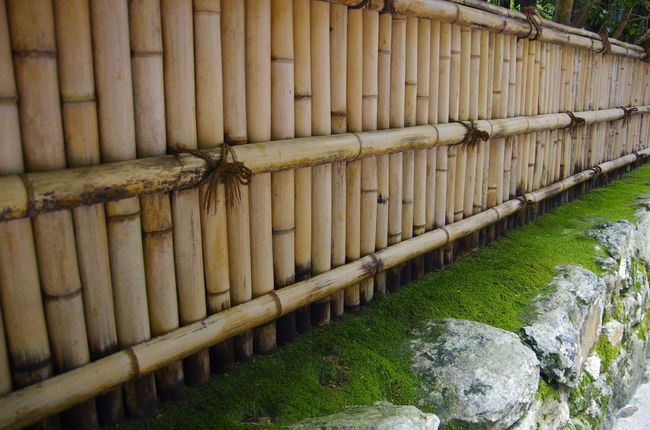 Bamboo Bamboo Fence Garden Green Color Japan Moss Silence Stone Wall Tranquil Scene Tranquility