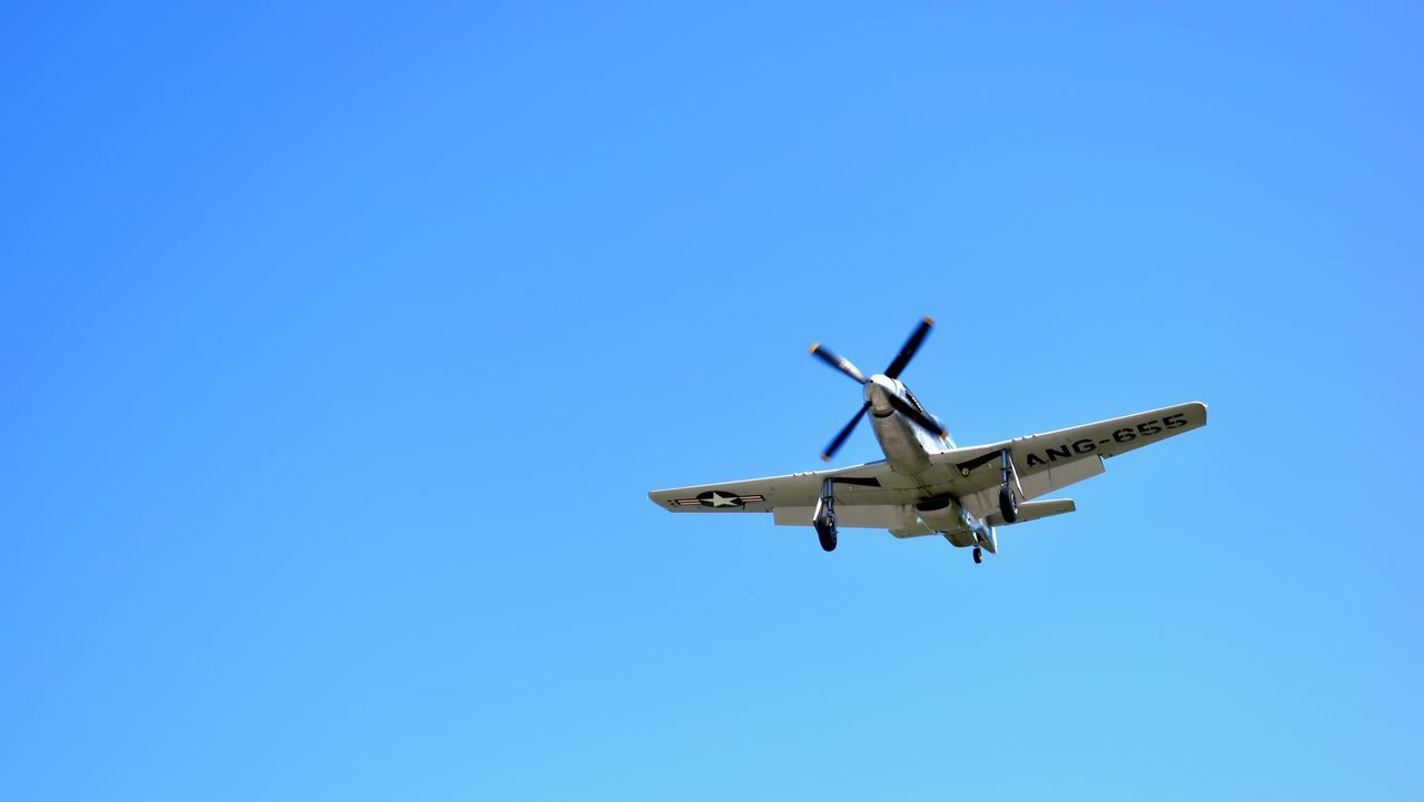P-51 Mustang. WWII Fighter Plane Blue Flying Clear Sky Airplane Transportation Copy Space Low Angle View Air Vehicle Travel Journey Mode Of Transport Mid-air No People Day Outdoors Sky Airshow Military Airplane Motion No Budget Photography