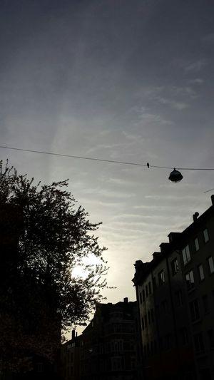 Hannover Morning Light Goodmorning Earlybird Sun ☀ Fotooftheday