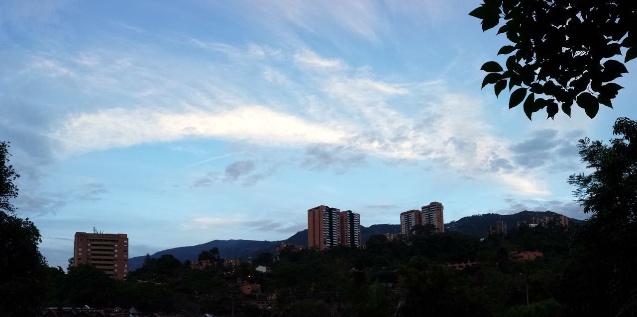 Clouds Clouds And Sky Cloudsporn Colombia Envigado Landascape Nature Palm Tree Palm Trees Panoramic Panoramic Landscape Panoramic Photography Panoramic View Shadow Sky Lover Sky Lovers Sun Sun Light Sunlight Sunrise Sunset Sunset_collection Tree