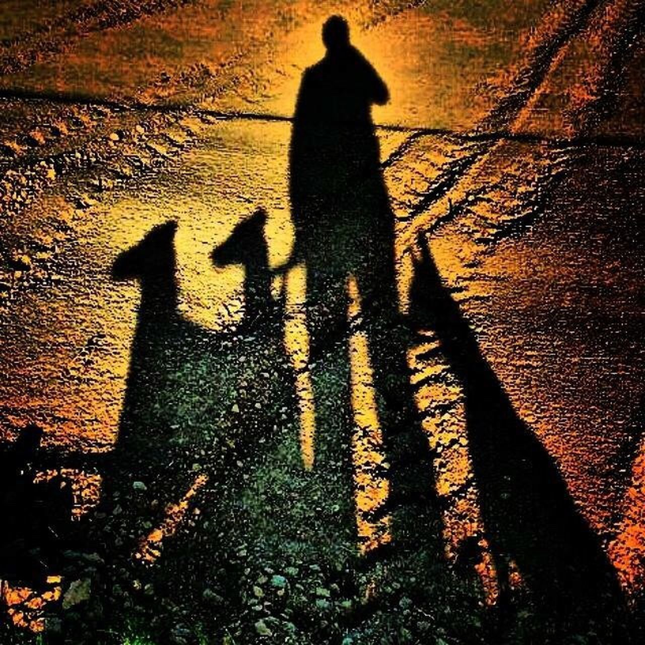 shadow, focus on shadow, long shadow - shadow, sunlight, silhouette, real people, high angle view, leisure activity, outdoors, day, lifestyles, nature, one person, men, mammal, people