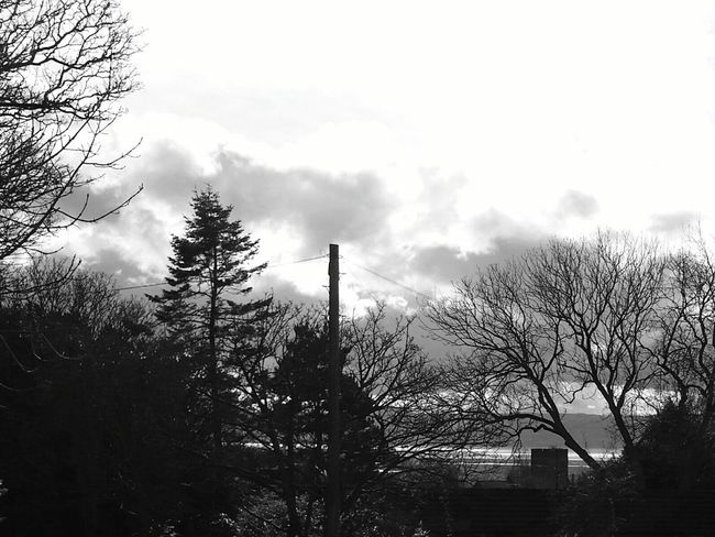 North Wales And St Peters Church Through The Trees Heswall North Wales River Dee  St Peters Church Wirral Wirral Peninsula Church