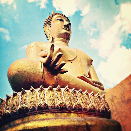 Buddha Pray ???