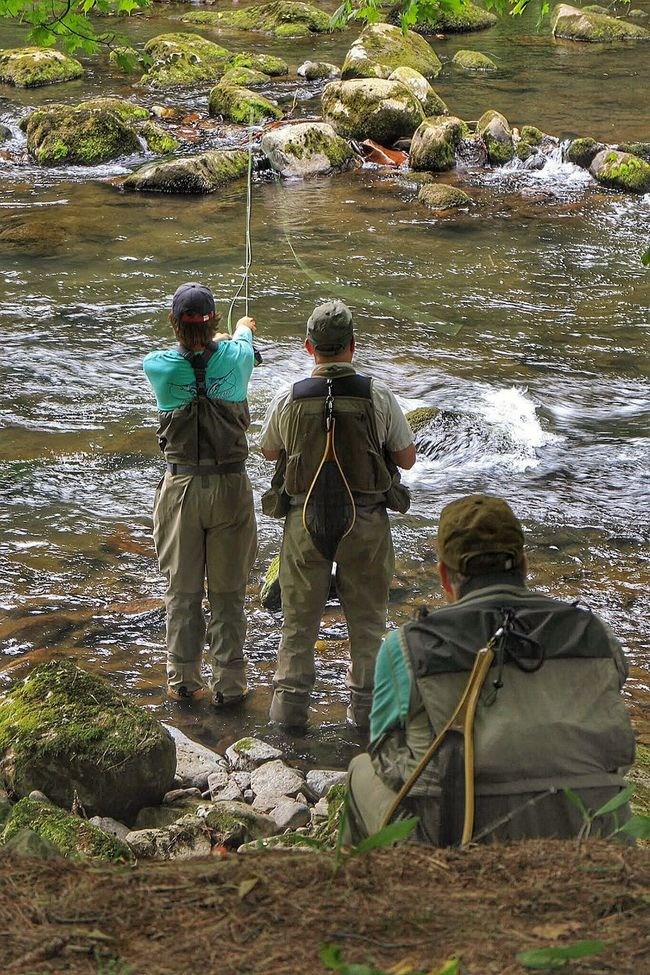 Fly Fishing Fishing Stream Guide River Trout Outdoors Angler Sport Savage River Western Maryland The Week On EyeEm