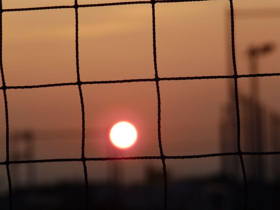 久しぶりにまん丸夕日を見れました~ Sundown part 2 ・こんばんは♪今日も1日お疲れ様です。| 帰り道 帰り道シリーズ 夕日♡ 夕日が綺麗だー! 夕焼けハンター 夕焼け。。。何で寂しいんだろう… No People EyeEm Best Shots - Sunsets + Sunrise EyeEmNewHere Eyeemgallery From My Point Of View Full Frame NoEditNoFilter Olympus Olympusinspired Olympusphotography Sunset Sunset Silhouettes Sunset_collection Silhouette Sundown Nature's Diversities Beauty In Nature
