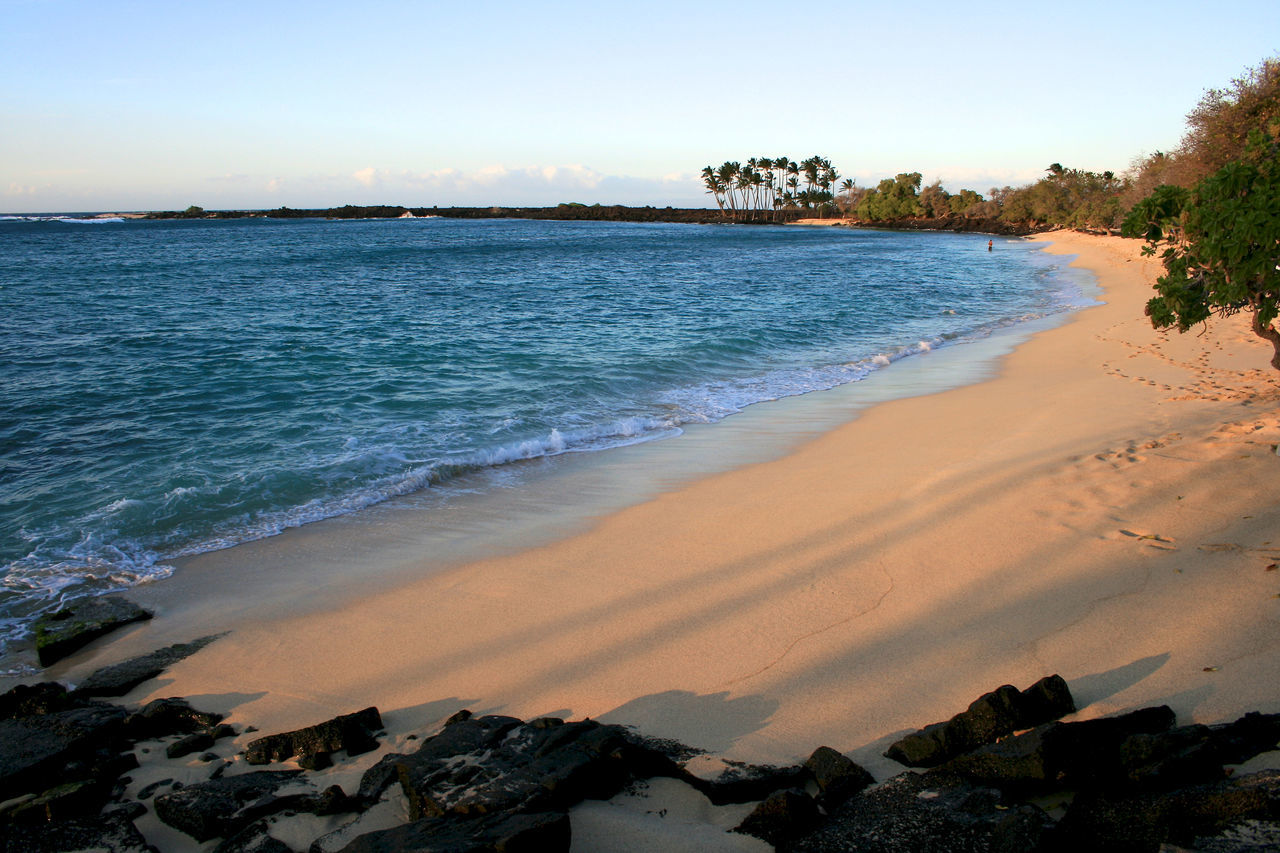 Mahaiula Beach Hawaii at sunset Beach Beauty In Nature Big Island Day Hawaii Horizon Over Water Kona Landscape Mahaiula Mahaiula Beach Nature No People Outdoors Palm Tree Scenics Sea Summer Sunset Sunsets Travel Destinations Tree Tropical Climate Water Wave