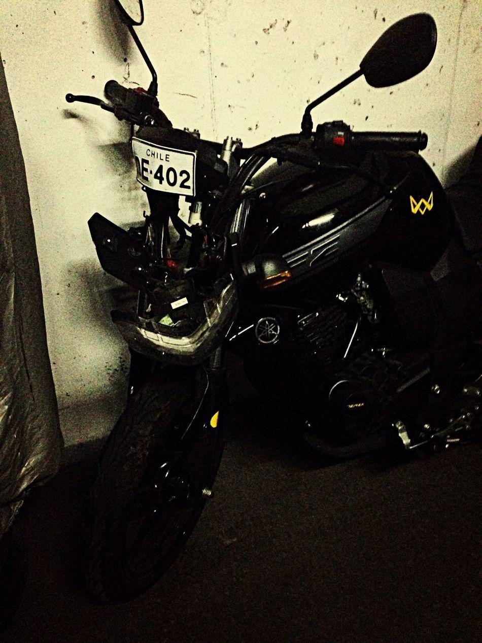 Te miro y sólo quiero llorar!! ???? chanchita te extrañaré !!! Moto Fz Yamaha MotoRatona