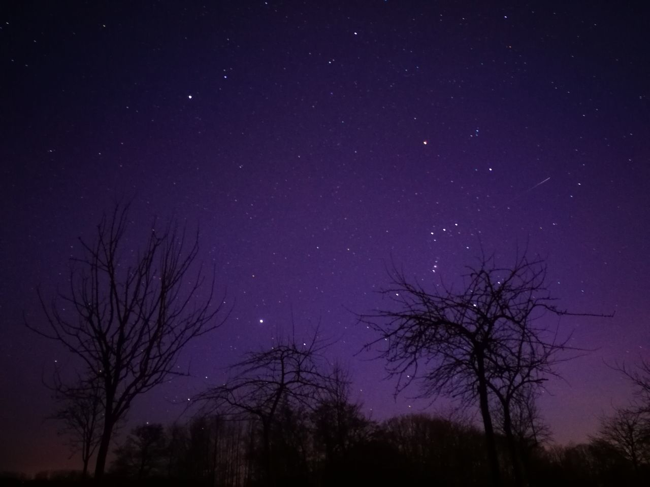 Star - Space Astronomy Sky Night Tree Space And Astronomy Space Star Field Beauty In Nature Low Angle View Galaxy Constellation Scenics Nature Silhouette Tranquil Scene Outdoors No People Tranquility HuaweiP9 EyeEm