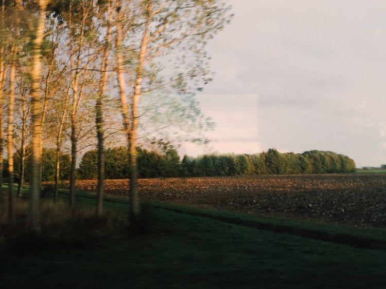 Windowseat Traveling Italy Countryside Veneto