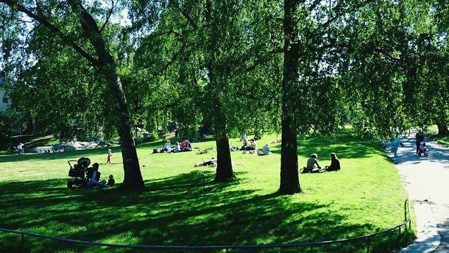 Stockholm Vasaparken