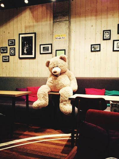Bench Side View Sitting Full Length Teddy Bear Day Sack Public Transport IPhoneography IPhon6