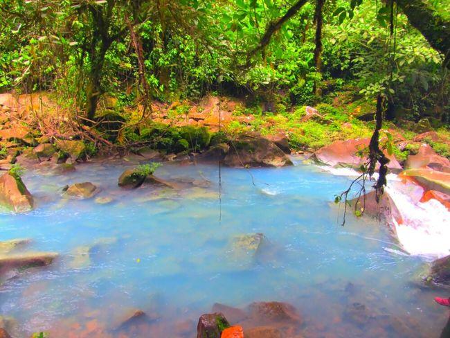 Hanging Out Naturaleza Natural Beauty Rio Celeste