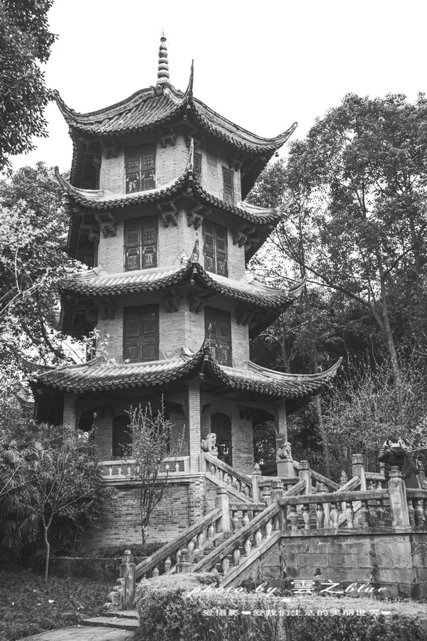 architecture, built structure, building exterior, tree, pagoda, place of worship, religion, cultures, traditional building, eaves, low angle view, roof, tradition, spirituality, no people, day, travel destinations, outdoors, nature, sky