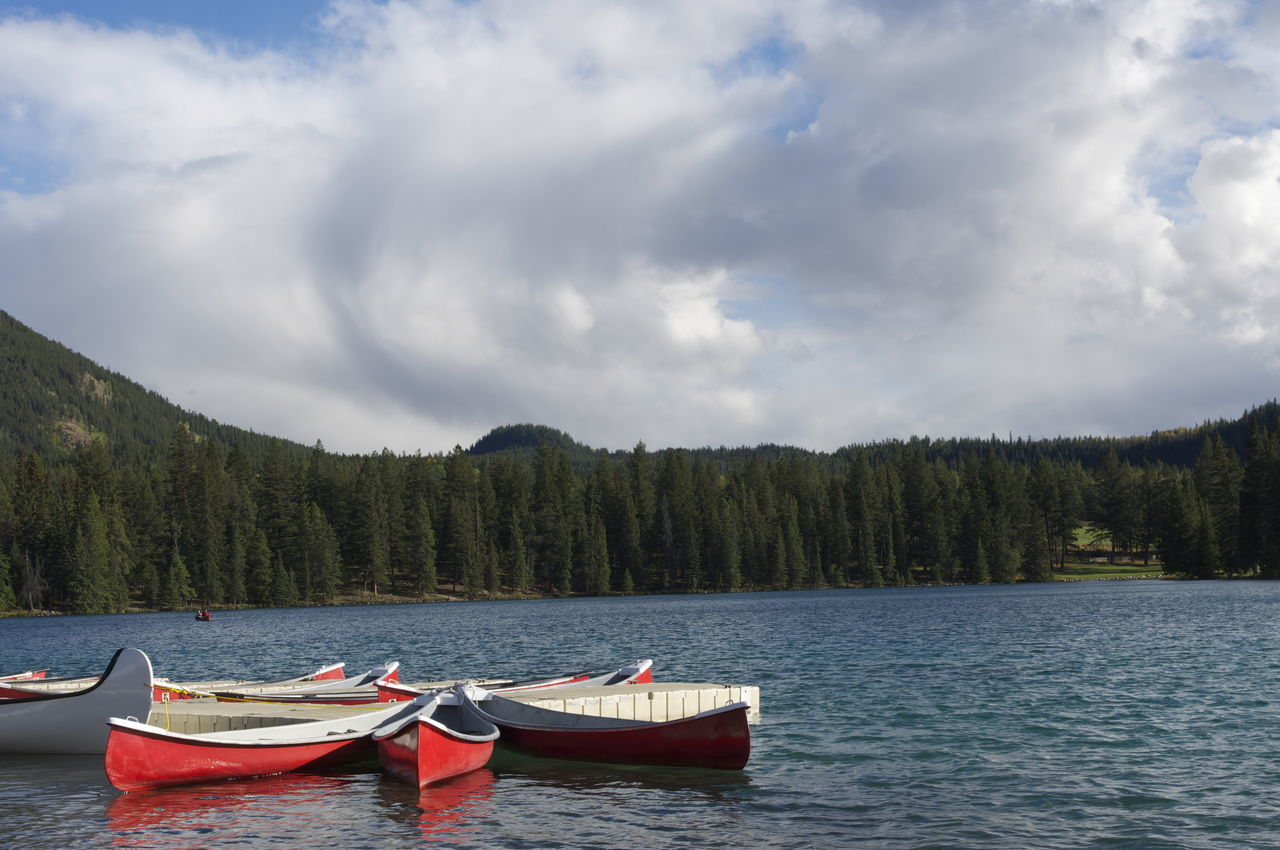 Beautiful stock photos of lake, Beauty In Nature, Cloud, Day, Forest