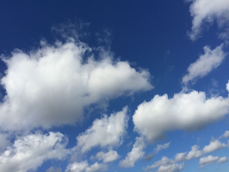 Cloud_collection  Bluesky Skyscape Backgrounds Sky And Clouds Lookingup Fluffy Clouds Sky_collection Sky Ombré