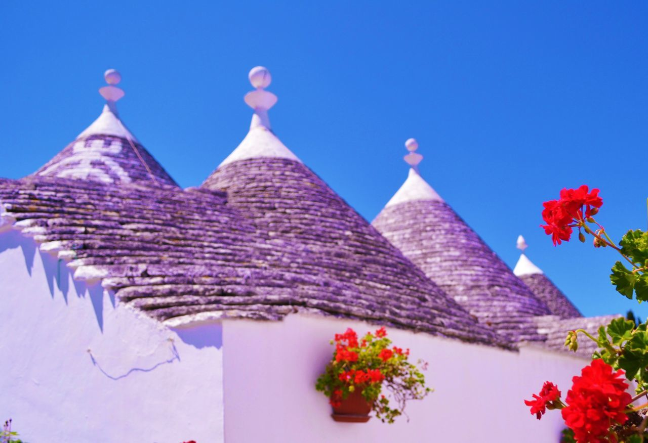 Alberobellophotocontest Architecture Blue Built Structure Clear Sky Cultures Day Famous Place Flower Growth High Section Low Angle View Nature No People Outdoors Place Of Worship Plant Red Sky Temple Temple - Building Tetti  Tourism Travel Destinations Trulli
