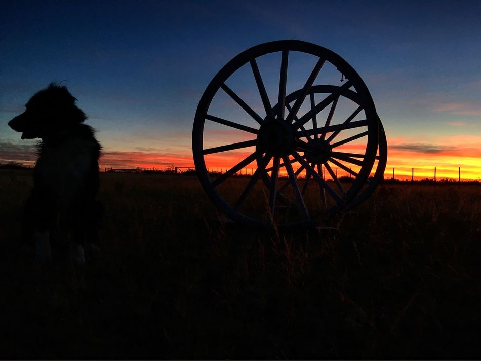 Sunset Wheel Sky Weapon Canon No People Outdoors Patagoniaargentina Peon Caballo Campo Chubut Argentina Photography Argentina 👑🎉🎊👌😚😍 gaucho Gaucho Che Gaucho Argentino