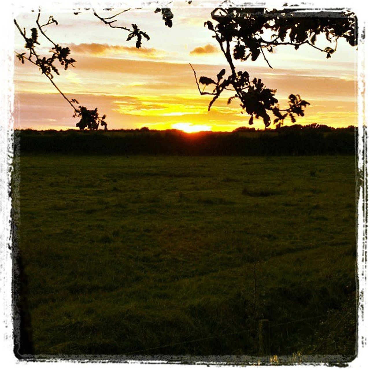Sunset Evening Gettingcold Endofsummer