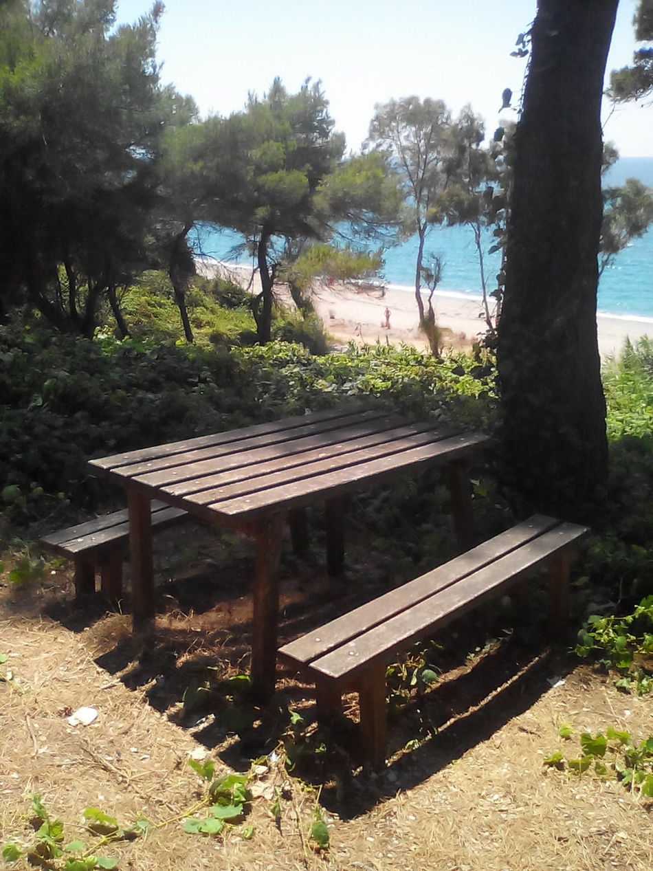 Relaxing Taking Photos Sky Trees Sea Pardise Nature Green Color Green Forestwalk Forest Photography Forest Park Forest Forest Path Blue Sea Blue Sky Blue Water Forestphotography Forest Trees Sand Beach Enjoying The Sun Picknick Picknickbench