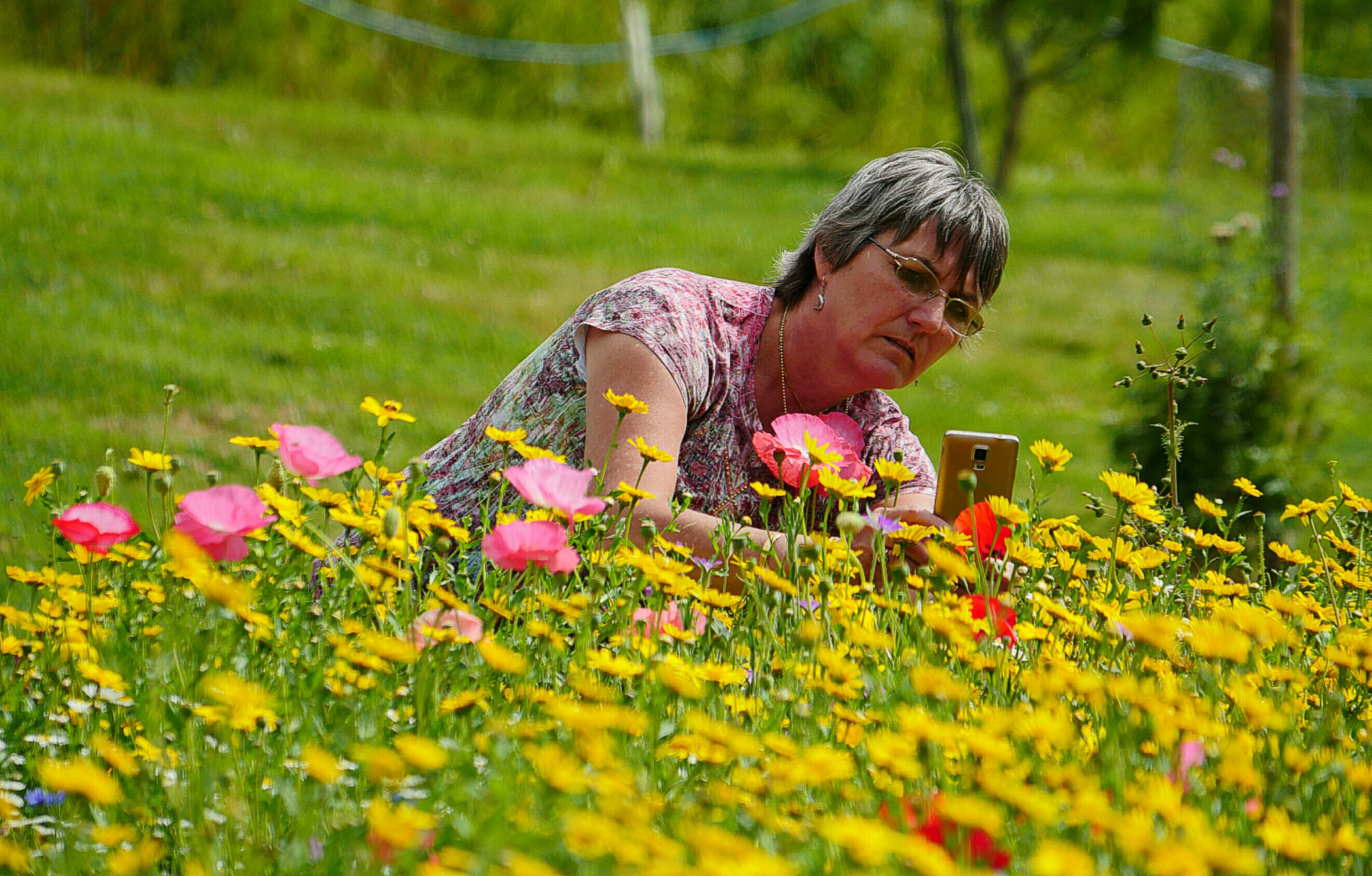 EyeEm Selects Flower Meadow Sunny Say One Woman Only Flowerbed Beauty In Nature Nature Photographer Yellow Flowers Colourful