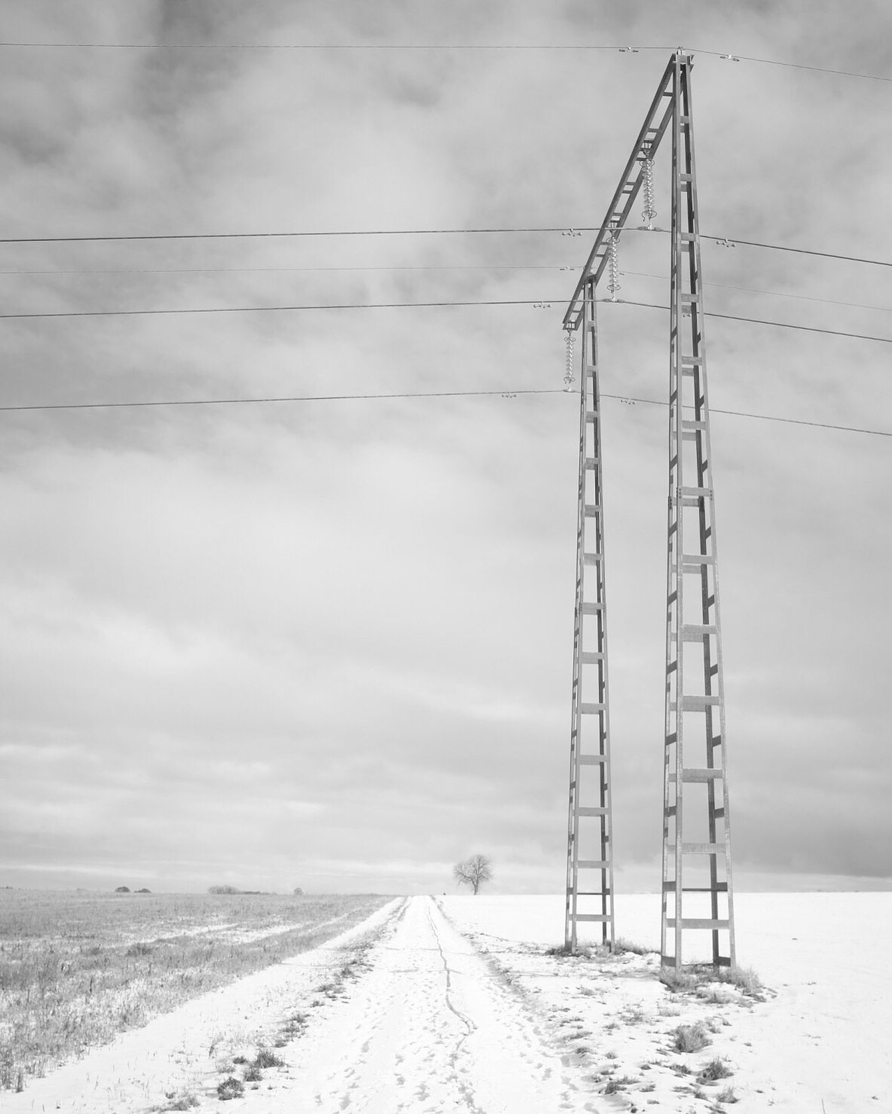 Power Line  Landscape Electricity Pylon Shootermag Bw_collection EyeEm Best Shots - Black + White Black And White Winter