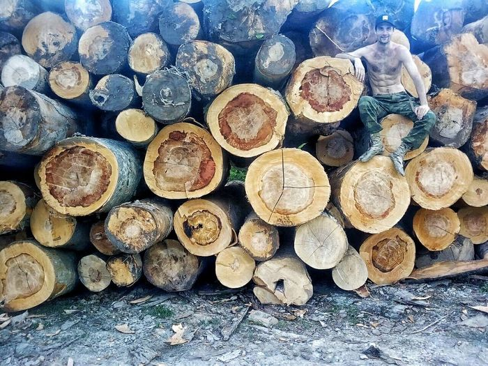 Breathing Space Abundance Close-up Day Deforestation Environmental Issues Forestry Industry Heap Large Group Of Objects Log Lumber Industry Nature No People Outdoors Pile Stack Timber Wood - Material Woodpile