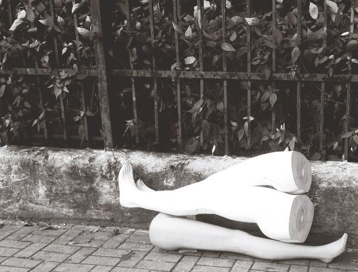 São Paulo Dummy Dummies Death Minimalism City Trash... City Trash Trash Sao Paulo - Brazil City Life City Street Streets Streetphotography