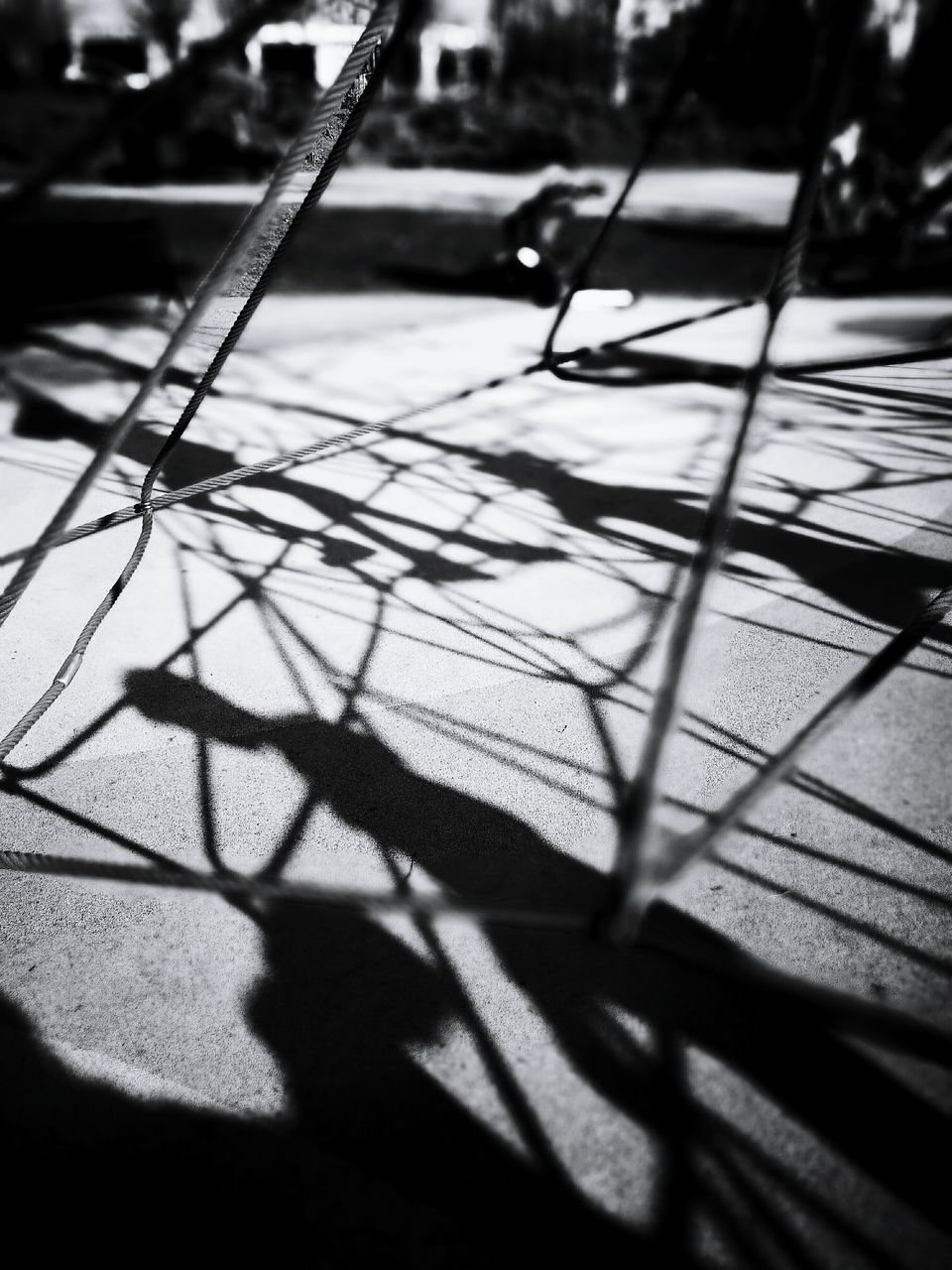 shadow, sunlight, selective focus, day, outdoors, real people, close-up, nature