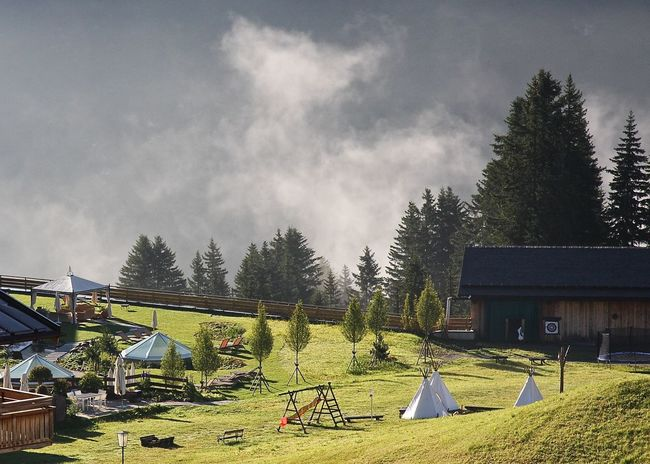 Alps Arlberg Austria Beauty In Nature Early Morning Enjoying Life Fog Grass Growth Idyllic Landscape Landscapes With WhiteWall Leisure Activity Nature Oberlech Scenics Sky Summer Sunbeds Take Your Place Taking Photos Tents The Great Outdoors - 2016 EyeEm Awards Tree Wineandmore