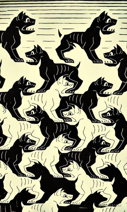 Blackandwhite Dogs Baku Azerbaijan