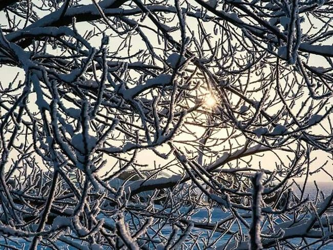 Sun Snow ❄
