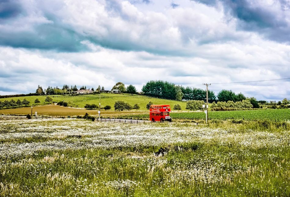 Red London Bus Countryside Fields Bus Double Decker Bus Red Touring Bertie