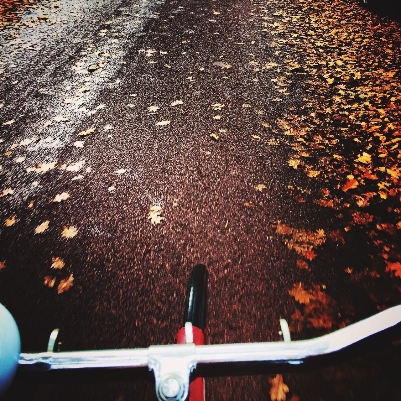 transportation, outdoors, no people, day, mode of transport, close-up, autumn, water, nature