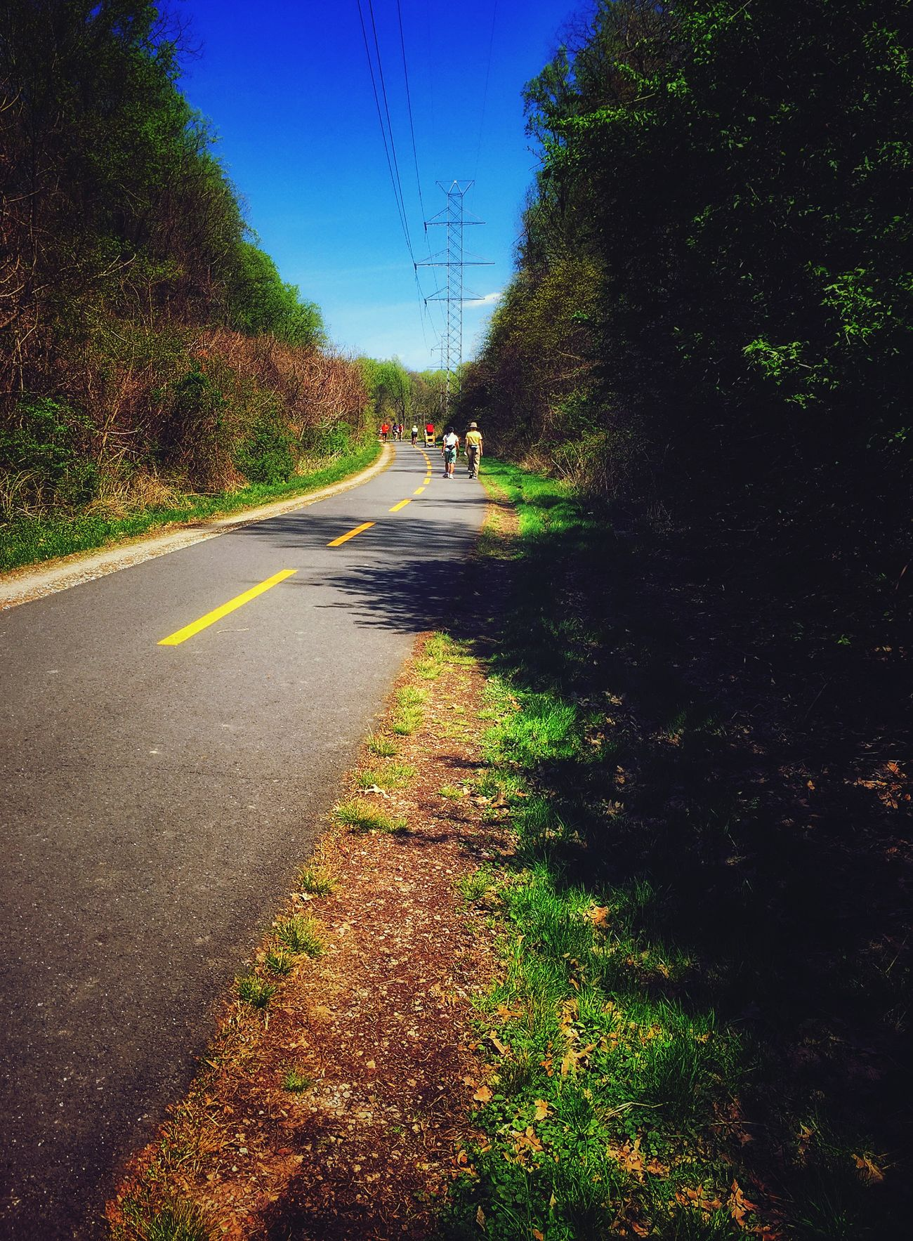 Along the bike path today - enjoying some sunshine Along The Bike Path Cycling Bike Path Virginia Spring Day