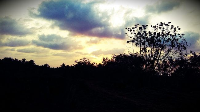 Hill Top Sunset Mi2cam