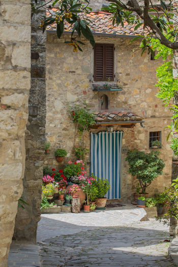 Architecture Building Exterior Built Structure Day Flower Holiday Italy Nature No People Outdoors Plant Tuscany Vacation Vacation Destination Vacation Time Village Village Photography