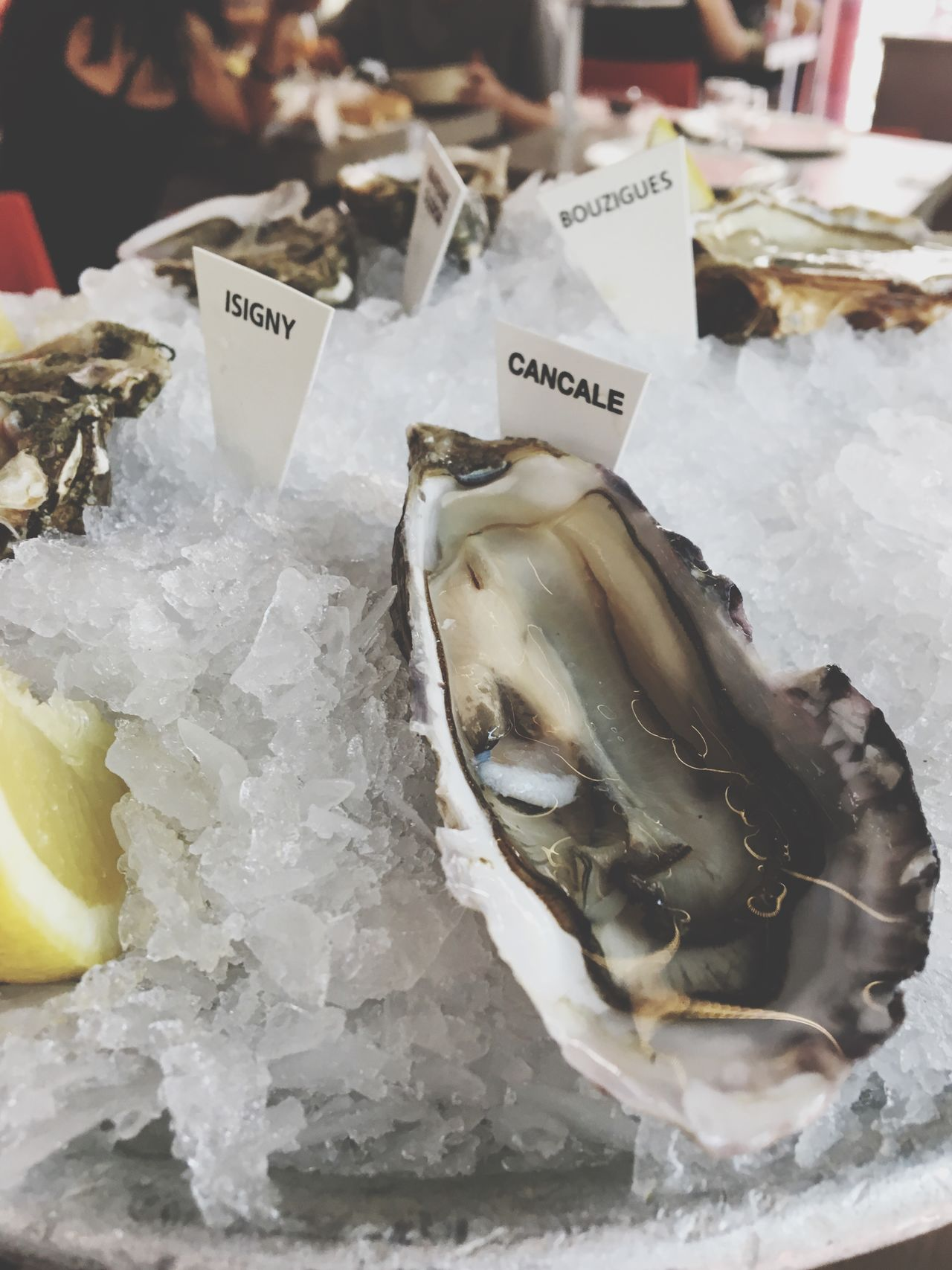 Seafood Food And Drink Food Freshness Ice Market Raw Food Healthy Eating Market Stall Fish Price Tag No People For Sale Retail  Fish Market Close-up Business Indoors  Day Oyster