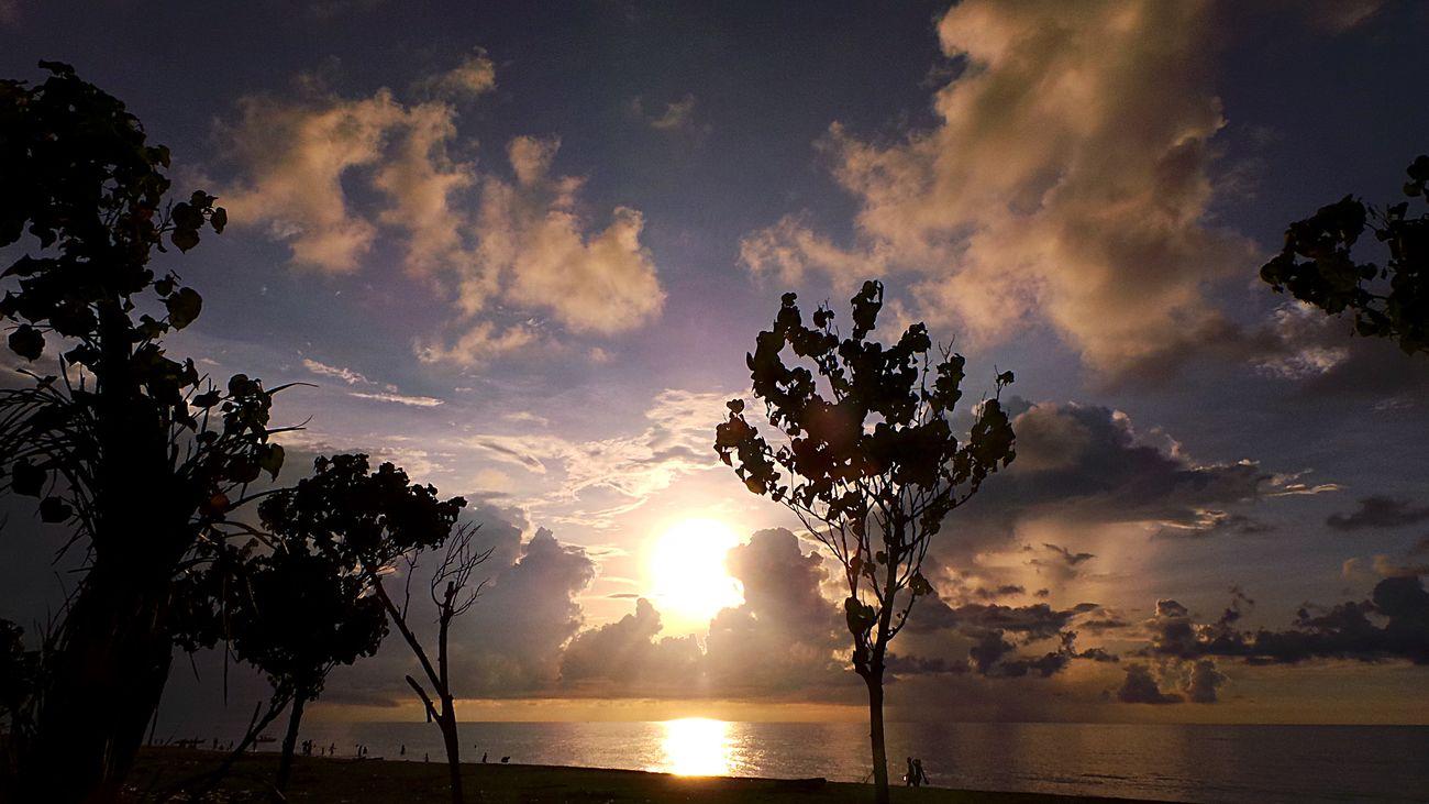 Protecting Where We Play Sunset Sunset Silhouettes Sunset✨trees✨ Beautiful Sunset Sunset Lovers EyeEm Best Shots - Nature EyeEm Nature Lover EyeEm Best Shots Natural Places